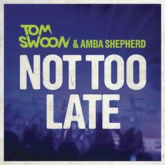 Not Too Late (Radio Edit)