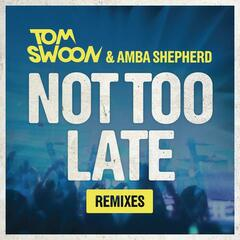 Not Too Late (Remixes)