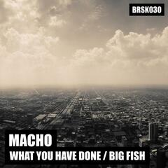 What You Have Done / Big Fish