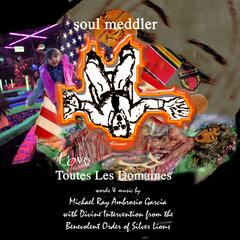 Soul Meddler - Single