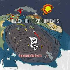 Black Hole Experiments
