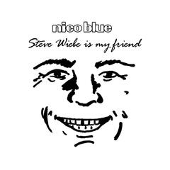 "Steve Wiebe Is My Friend (Parody of ""Why Can't We Be Friends?"" By War)"