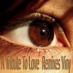 A Tribute to Love Remixes Viny