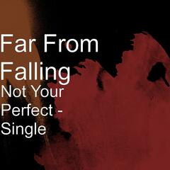 Not Your Perfect - Single