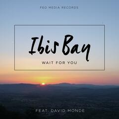 Wait for You (feat. David Monde)