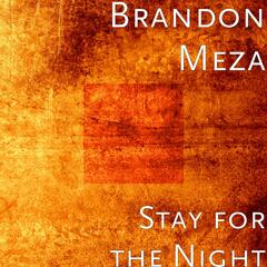 Stay for the Night (Unplugged) [feat. Ryan Garcia & Art Meza]