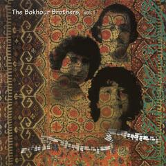 The Bokhour Brothers, Vol. 1