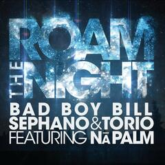 Roam the Night (feat. Na Palm)