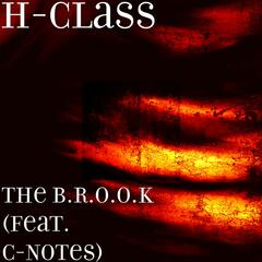 The B.R.O.O.K (feat. C-Notes)