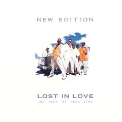 Lost In Love: The Best Of Slow Jams