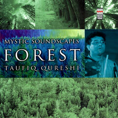 Mystic Soundscapes: Forest