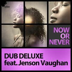 Now or Never (feat. Jenson Vaughan) (Remixes)