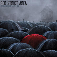 The Wandering of a Little Soul