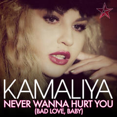 Never Wanna Hurt You [Bad Love, Baby] (Remixes)