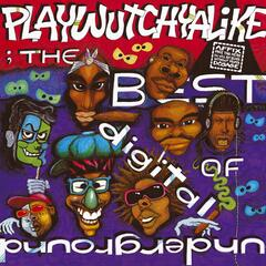The Best Of Digital Underground: Playwutchyalike