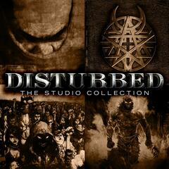 The Sickness, Believe, Ten Thousand Fists, and Indestructible