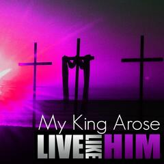 My King Arose
