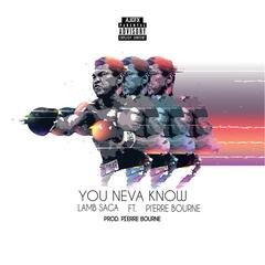 You Neva Know (feat. Pi'Erre Bourne)