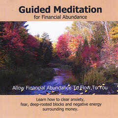 Money Magnet Transformational Meditation