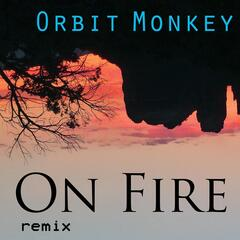 On Fire (Remix)