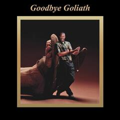Goodbye Goliath
