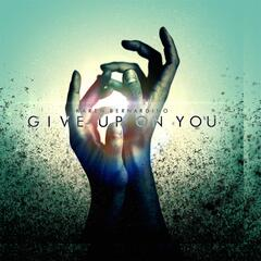 Give Up on You