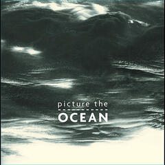 Picture the Ocean