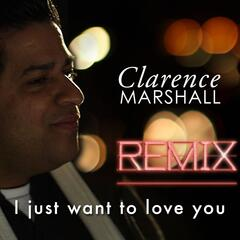 I Just Want to Love You (Remix)
