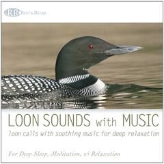 Loon Sounds With Music: Loon Calls With Soothing Music for Deep Relaxation