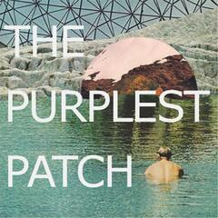 The Purplest Patch