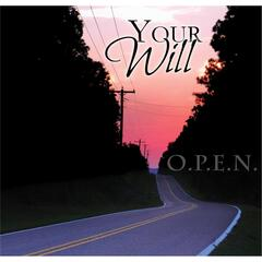Your Will (feat. Rayvon Owen)