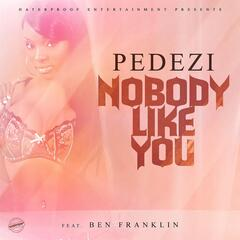 Nobody Like You (feat. Ben Franklin)