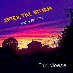 After the Storm (Remix)