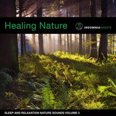 Healing Forest (Sleep and Relaxation Nature Sounds, Vol. 3)