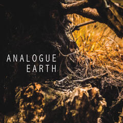Analogue Earth