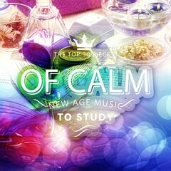 Top 30 Pieces of Calm New Age - Music to Effective Study, Better Concentration While Learning, Relaxation and Meditation Sounds of Nature