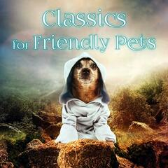 Classics for Friendly Pets – Calm Down Your Animal Companion, Soothing Music While You Are Out, Lovely Pets, Relaxing Piano for Dogs, Cats & Other Friends, Relax Melodies for Puppies & Kittens