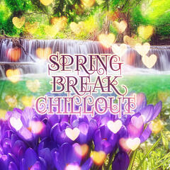 Spring Break Chillout – Miami Beach Chill Out, Party Lounge with Chillout Music, Sexy Chillout Sessions, Party Hard & Dance with Electronic Music, Go Crazy During Ibiza Spring Chill, Music to Relax
