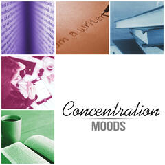 Concentration Moods - Meditation and Focus on Learning, Concentration Music and Study Music for Your Brain Power, Instrumental Relaxing Music for Reading, New Age