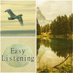 Easy Listening - Acoustic Guitar Music, Relaxing Music to Wind Down, Study, Relax and Reduce Stress