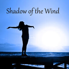 Shadow of the Wind - Anti Stress Music, Calming Nature Sounds, Relaxing Quiet Music with Sounds of Nature, White Noise 4 Deep Sleep