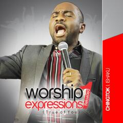 Worship Expressions 1 Reloaded (True of You)