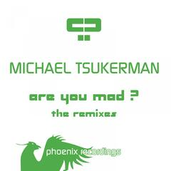 Are You Mad? (The Remixes)