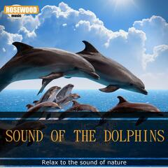 Sound of the Dolphins