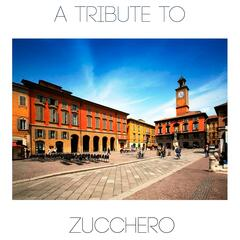 A tribute to zucchero