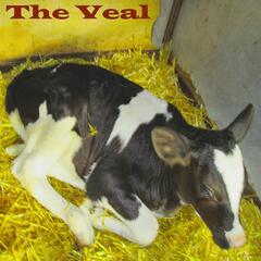 The Veal