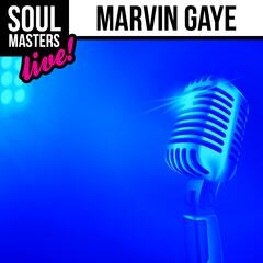 Soul Masters: Marvin Gaye