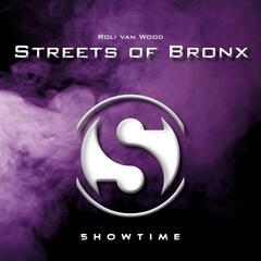 Streets of Bronx