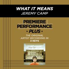Premiere Performance Plus: What It Means