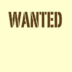 Wanted (Hunter Hayes Tribute) - Single